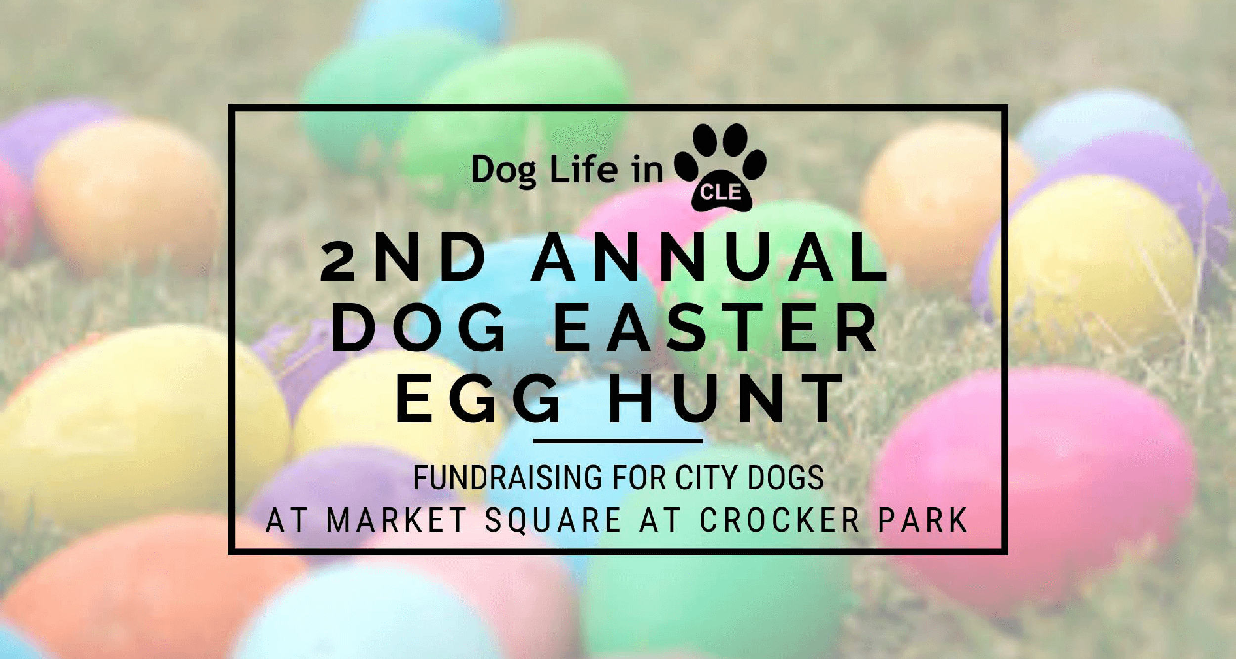 2nd Annual Dog Easter Egg Hunt